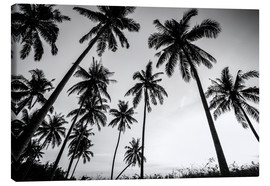 Canvas-taulu  Silhouettes of palm trees