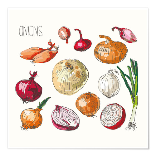 Juliste Onions collage