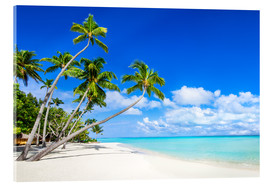 Akryylilasitaulu  White beach and palm trees in the tropics - Jan Christopher Becke
