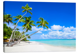 Canvas-taulu  White beach and palm trees in the tropics - Jan Christopher Becke