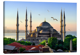 Canvas-taulu  The blue mosque in Istanbul