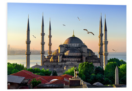 PVC-taulu  The blue mosque in Istanbul