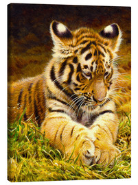 Canvas-taulu  Young tiger lying in grass