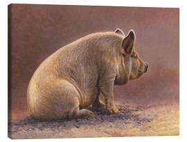 Canvas-taulu  Pig in the wallow