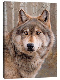 Canvas-taulu  North American Wolf - Ikon Images