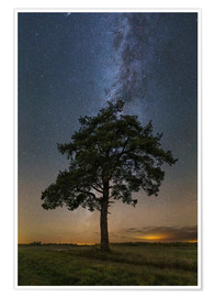 Juliste Lonely tree under the Milky Way