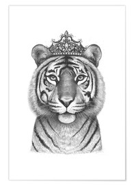 Juliste Tiger Queen