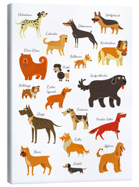 Canvas-taulu  Dogs in all sizes - Kidz Collection
