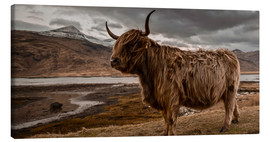 Canvas-taulu  Highland cattle - Art Couture